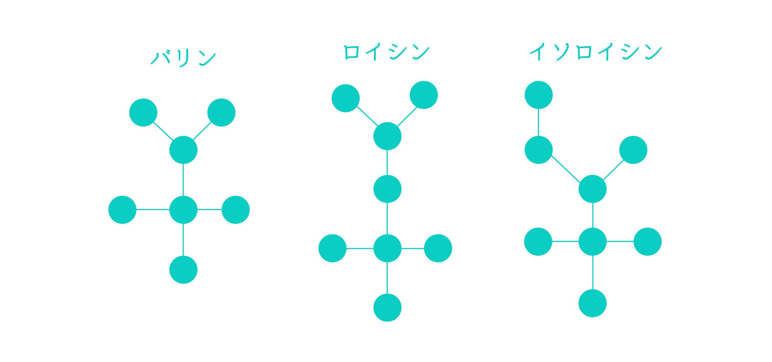 BCAA(バリン・ロイシン・イソロイシンの構造)